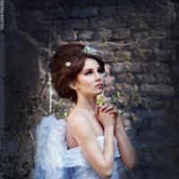 Angel :: Yellow Raven Photo