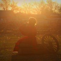 Музыка на закате :: Вера Шамраева