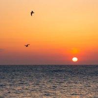 Черное море :: вадим климанов