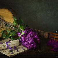 О чем плачут гитары :: Ирина Приходько