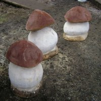Рукотворные грибочки :: Марина Домосилецкая