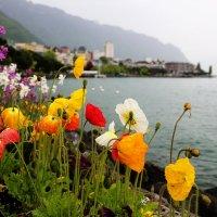 Монтре, Швейцария :: Larisa Ulanova