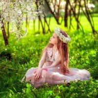 в вишнёвом саду... :: Екатерина Overon