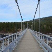Мост через Ниву :: Lera Morozova