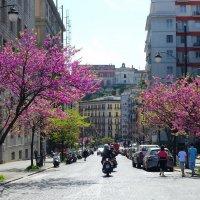 Неаполь :: михаил кибирев