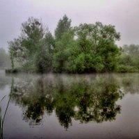 туман... :: юрий иванов