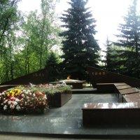 В Подмосковном городе Дзержинский Парк Победы май 2015 год :: Ольга Кривых