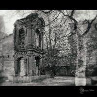 Призрачный дом :: Natalia Danilova