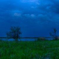 Сумерки на разливах перед дождем :: Ксения Довгопол