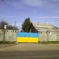 Столица! :: Миша Любчик