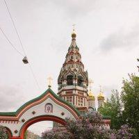 Сирень :: Иван Жеребненко
