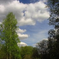 Воспоминание о солнечном дне :: Андрей Лукьянов