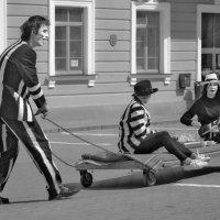 Цирк уехал ....)) :: Светлана З
