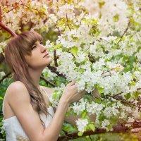 Весеннее цветение :: L. Anna