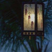 Фонарик над Меконгом :: Евгений Печенин