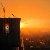 Закат в городских джунглях :: Анжелика