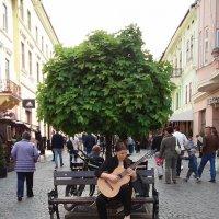 Девушка с гитарой :: Яна Чепик