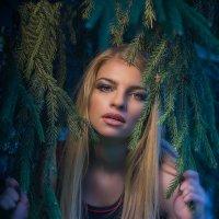 Лесная красавица :: Юра Викулин