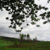Тургеневские просторы :: Peripatetik