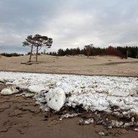 Северодвинск. У Белого моря в разные дни (3) :: Владимир Шибинский