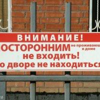 Купи квартиру - и гуляй в нашем дворике! :: Нина Бутко
