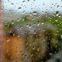 Майский дождь :: Денис Кораблёв