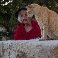 Кошки очарование мое...-из серии Кошки очарование мое! :: Shmual Hava Retro