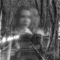в ночи деревьев :: Кирилл Вачовски
