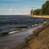 Песчаный берег :: Valerii Ivanov