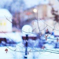 Зимняя сказка :: Екатерина Филатова