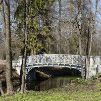 Ажурный мостик в Дворцовом парке :: Елена Павлова (Смолова)