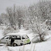 Капризы погоды 6 мая 2015 года г Хабаровск \\Серия\\ :: Николай Сапегин