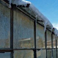 Зимние отражения :: Наталья Джикидзе (Берёзина)
