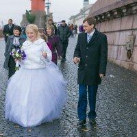 Свадьба на стрелке В.О. :: Виктор Седов
