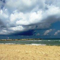 на пляже Тель Авива :: Anna Sokolovsky