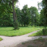Остатки усадебного парка :: Алексей К
