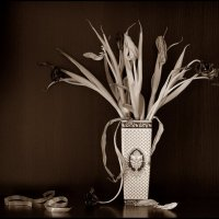 Увядшие тюльпаны. :: Валерия  Полещикова