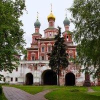 Южные ворота Новодевичьего монастыря :: Владимир Болдырев