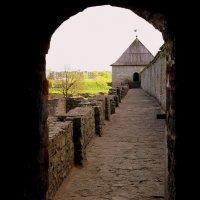 Ивангородская крепость :: Ирина Фирсова