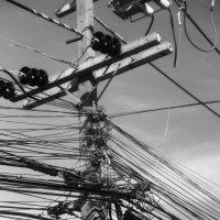 Страшный сон электрика :: Евгения Каравашкина