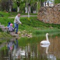 Семейная рыбалка :: Андрей Куприянов