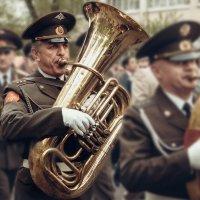 Труба зовёт! :: Виктор Никаноров