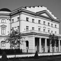 Палац Розумовского :: Андрий Майковский