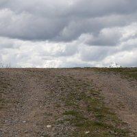 Дорога в облака :: Светлана