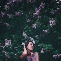 Сиреневое настроение :: Наташа Скрипка