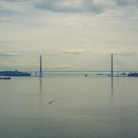 Владивосток, Маяк. Вид на мост на остров Русский :: SergeuBerg