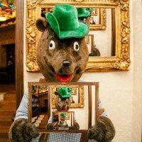 Медведь в кубе :: Дмитрий Носов