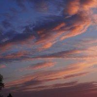 Акварельное небо. :: Антонина Гугаева
