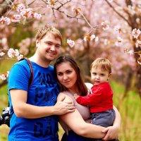 Семья :: Александра Авраменко