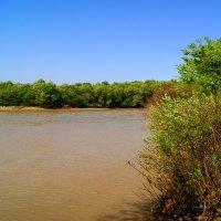 Река :: Игорь Сикорский